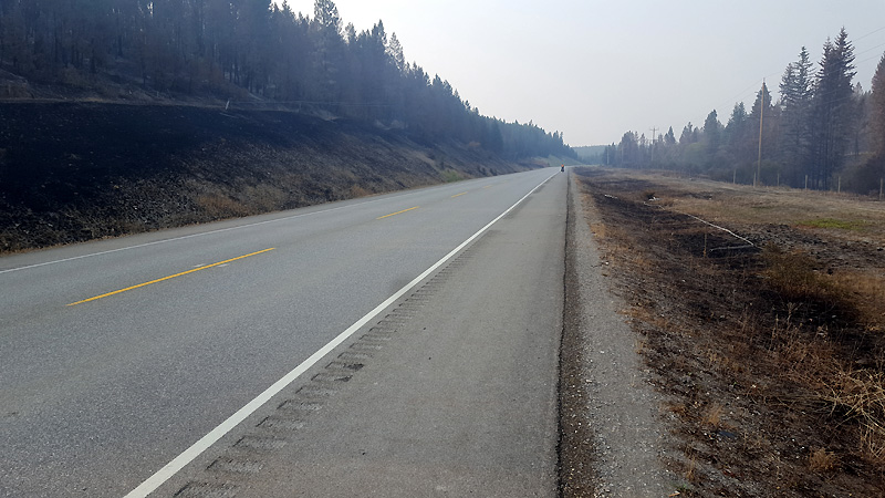 Signs of a recent wildfire