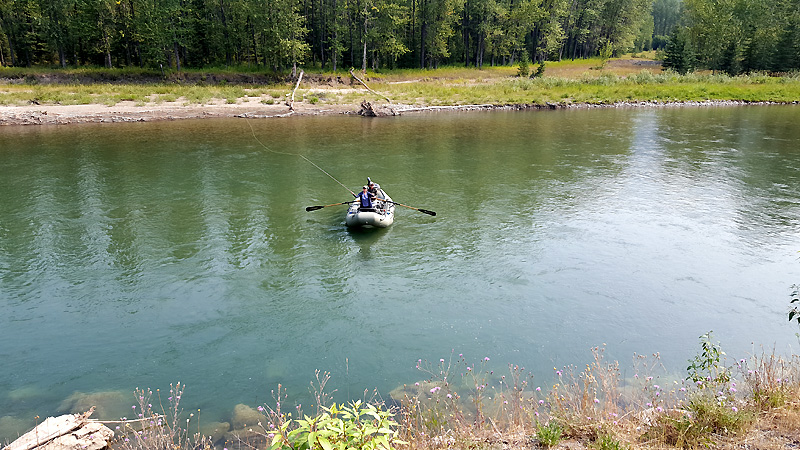 Flyfishing the Elk River