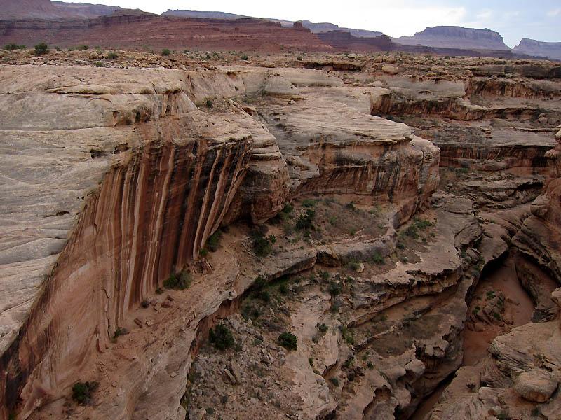 View into White Canyon
