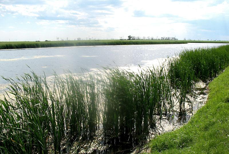 An arm of Lake Sakakawea