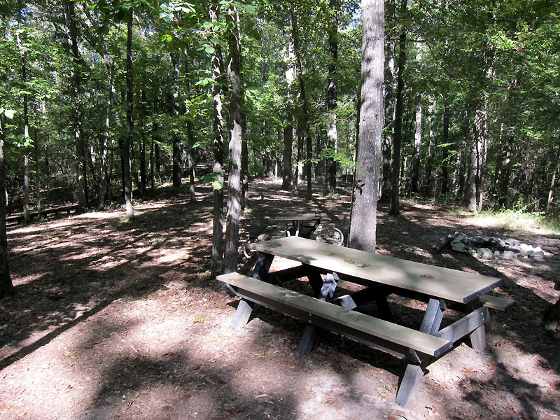 Nice campsite at Natchez Trace Visitors Center Tupelo
